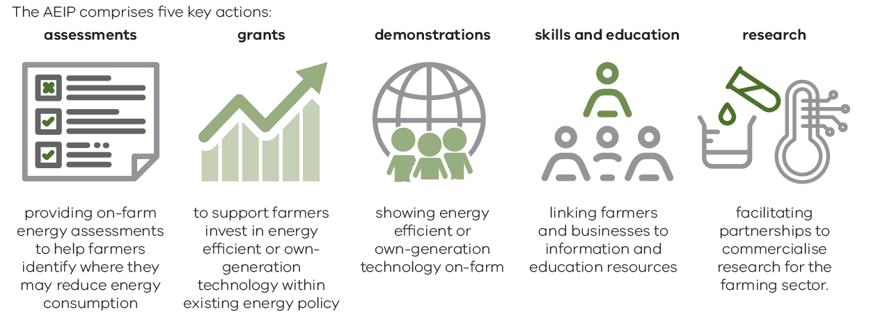 Graphic outlining the five key actions of the Agriculture Energy Assessment Plan being: assessments, grants, demonstrations, skills and education, research